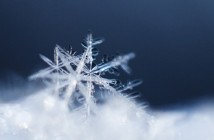 snowflake-macro-wallpapers_35673_1920x1200