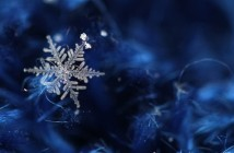 ice-crystals-snow-winter-2516430-1920x1080