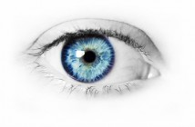 bigstock_Blue_Eye_2910508